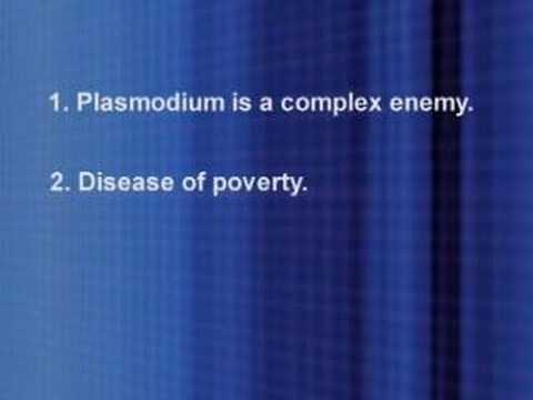 The Fight Against Malaria