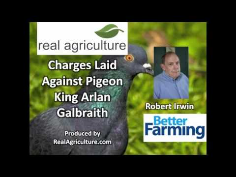 Charges Laid Against Pigeon King Arlan Galbriath - Robert Irwin, Better Farming