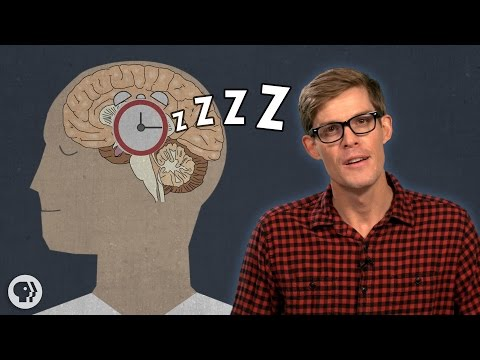 Why Do We Have To Sleep?