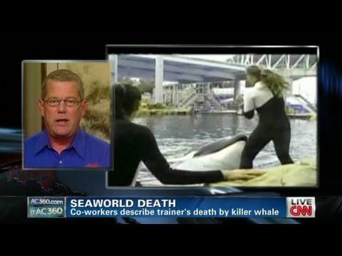 SeaWorld trainers describe death details