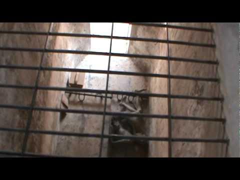 Con Dao Prison Tiger Cages