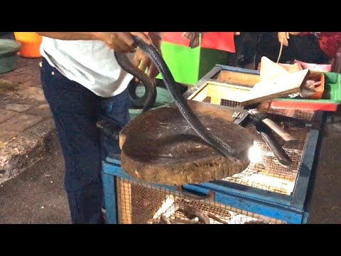 Indonesian Street Food - Cobra Satay & Cobra blood