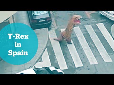 Person in T-Rex suit defies coronavirus lockdown in Spain