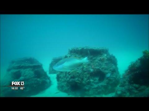 Eternal reefs offer more than memories
