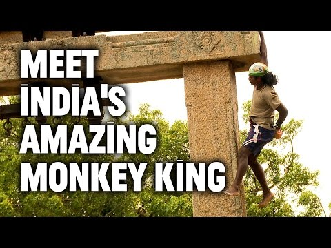 From Suicidal to Scaling Walls: India's Amazing Monkey King