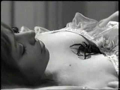 Tarantula Scene from 'This Night I Will Possess Your Corpse'