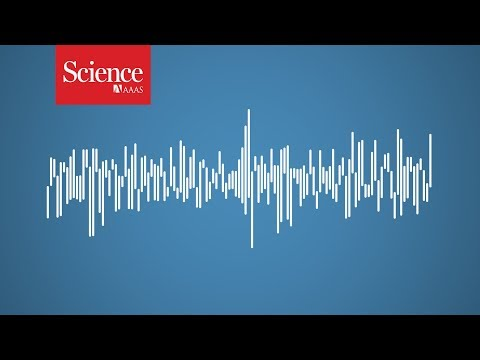 One of the loudest underwater sounds is made by an animal you wouldn't expect