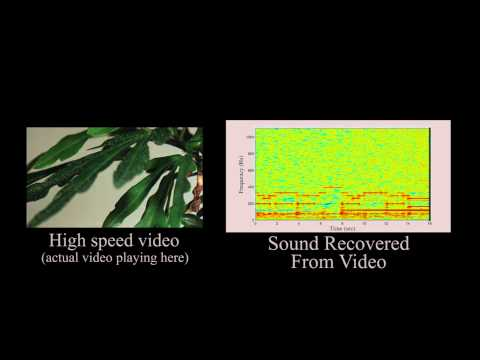 The Visual Microphone: Passive Recovery of Sound from Video