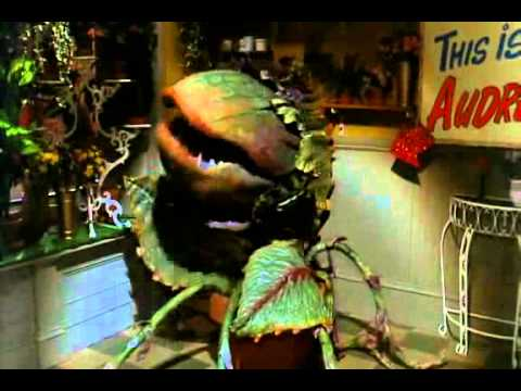 Little Shop of Horrors - Feed Me