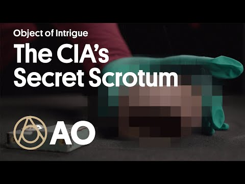 The CIA's Fake Scrotum That Hid a Radio | Object of Intrigue | Atlas Obscura