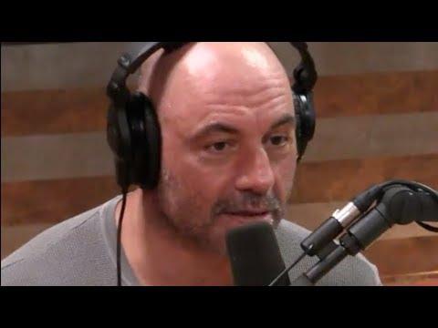 Joe Rogan on the South Africa Farm Controversy