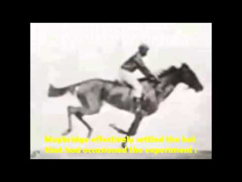 "Muybridge's ""Flying Horse""-Eadweard Muybridge-1878.wmv"