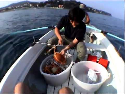 Shimabuku, Catching Octopus with self-made ceramics