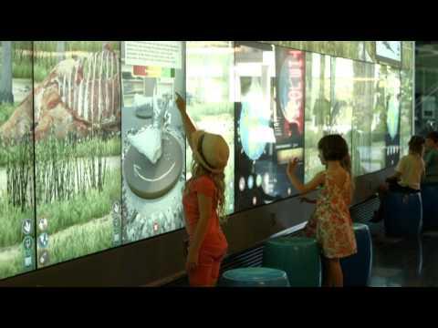 Dino Zoo at QUT