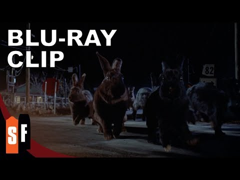 Night Of The Lepus (1972) - Clip: Lepus On The Move