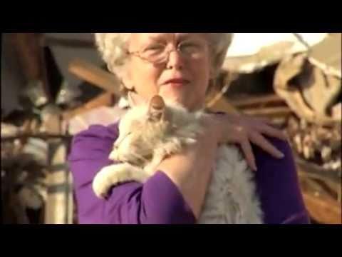 Tornado Victim Finds Cat During Interview