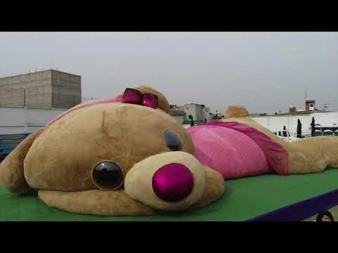 Giant teddy bear breaks Guinness World Records in Mexico