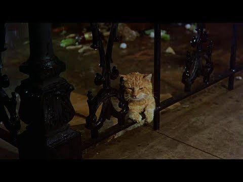 "Breakfast At Tiffany's ""Cat's"" Best Bits, Complete. HD"