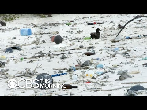 """Ambitious effort to clean up """"great Pacific garbage patch"""" gets underway"""