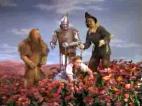 The Wizard of Oz - poppies (*it's GYPSUM, not asbestos FFS!)