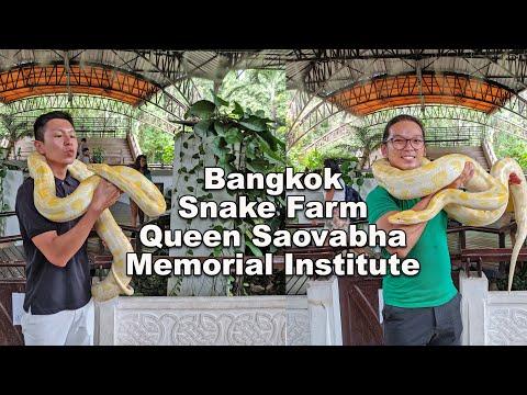 Bangkok Snake Farm Queen Saovabha Memorial Institute - Places to visit in Bangkok