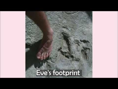 Eve's footprints in South Africa