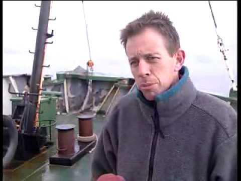 Re: Greenpeace rams whaling ship #1