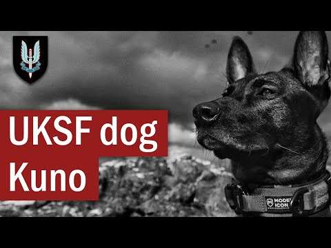 The Actions of UK Special Forces dog: Kuno | April 2019