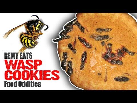 Remy Eats Wasp Cookies (www.foododdities.com) Bug Video