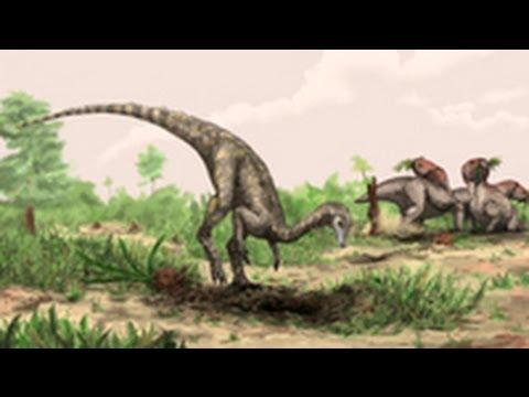 World's Oldest Known Dinosaur Identified