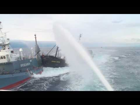 Whale Wars: Season 2 – SSCS Rams Japanese Ship (2nd Angle)