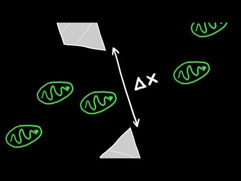 Heisenberg's Uncertainty Principle Explained