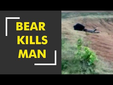 Bear claims life of a man in Odisha