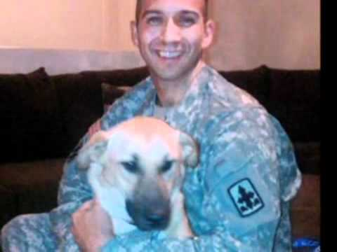 1270X'Hero' dog accidentally euthanized