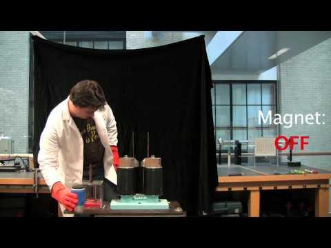 Paramagnetism of Liquid Oxygen