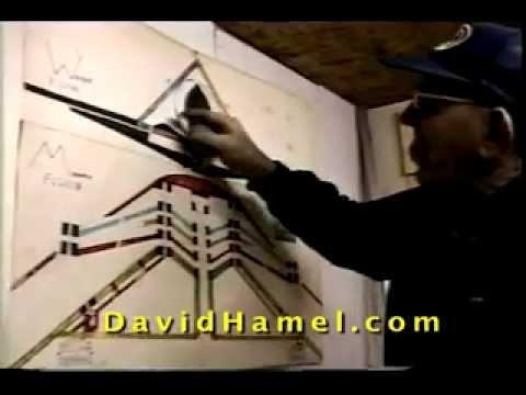 UFO Alien Contactee David Hamel talks about Alien Life