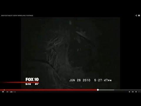 The Mogollon Monster; Arizona's bigfoot