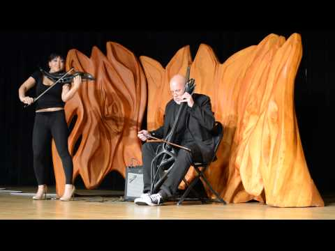 3D Printed Cello & 2-String Piezoelectric Violin in Action
