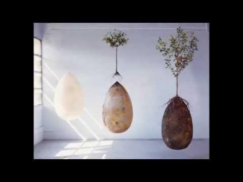 Capsula Mundi - Burial Pods