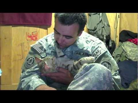 2013 Diamond Collar Hero Winner Staff Sgt. Jesse Knott & Koshka