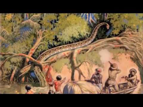 Col Percy Fawcett- Lost in the Amazon.mov