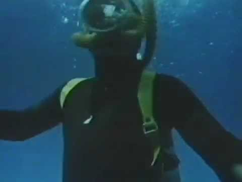 Shark! (Arma de Dos Filos) (Samuel Fuller, EEUU, 1969)