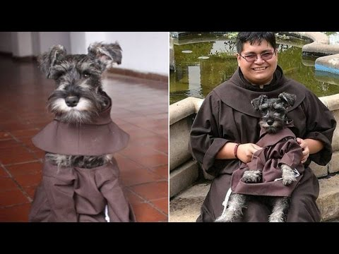 Monastery Makes New Dog An Honorary Friar To Encourage More Pet Adoptions