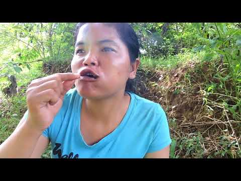 Near my village - woman finding black spider on rock - Cooking eating delicious Of course