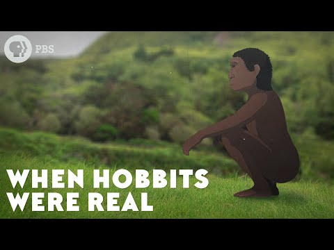 When Hobbits Were Real