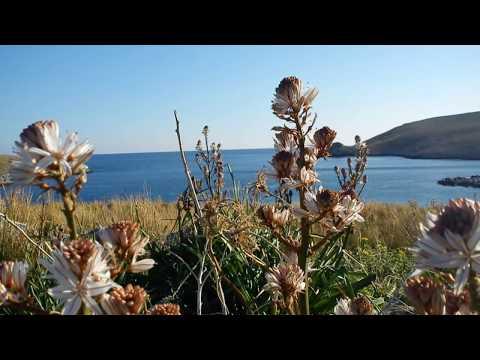 Μάνη, Ακρωτήριο Ταίναρο // (Cape Matapan) - GREECE .wmv