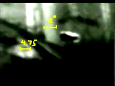 "The ""Woodpile Sasquatch"" Thermal Footage: East Texas Habituation Site"