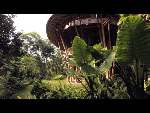 The Cities of the Future – HSBC In The Future I #BambooCity I HSBC Bank Canada