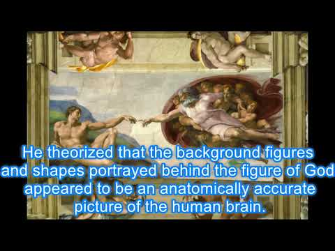 The Creation of Adam- Brain Theory