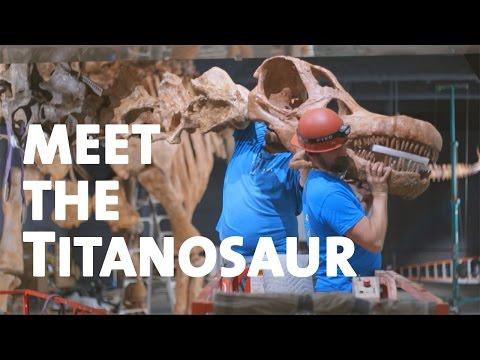 Meet the Titanosaur
